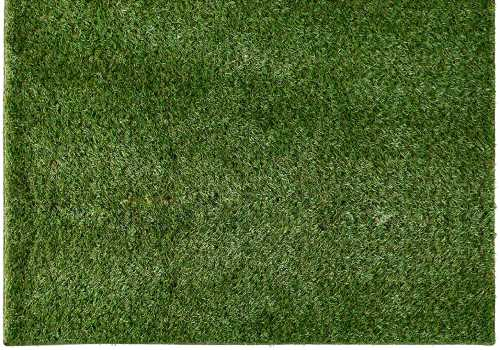 large outdoor turf carpet