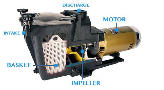 pool pump diagram